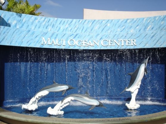 MauiOceanCenter